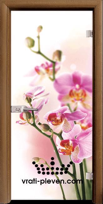 Стъклена интериорна врата модел Print G 13-2 с каса Златен дъб
