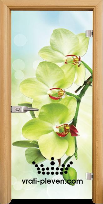 Стъклена интериорна врата модел Print G 13-3 с каса Светъл дъб